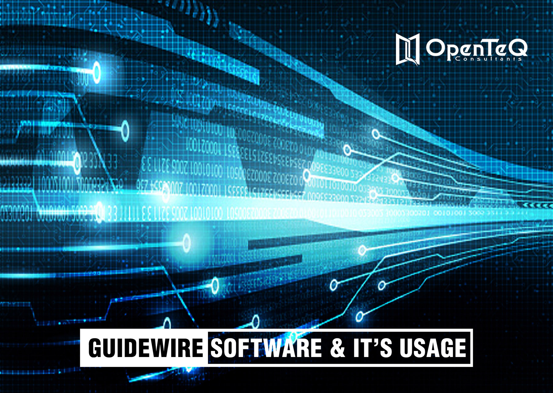 guidewire software and its usage